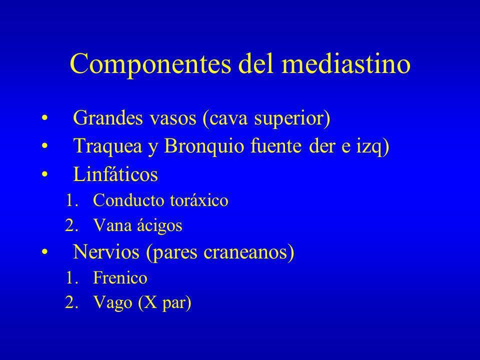 Componentes del mediastino Grandes vasos (cava superior) Traquea y Bronquio fuente der e izq) Linfáticos 1.Conducto toráxico 2.Vana ácigos Nervios (pa