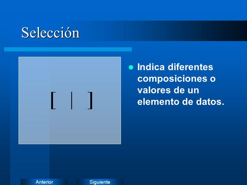 SiguienteAnterior Datos opcionales Indica un componente o valor opcional.