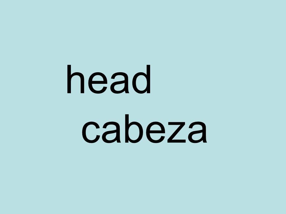 head cabeza