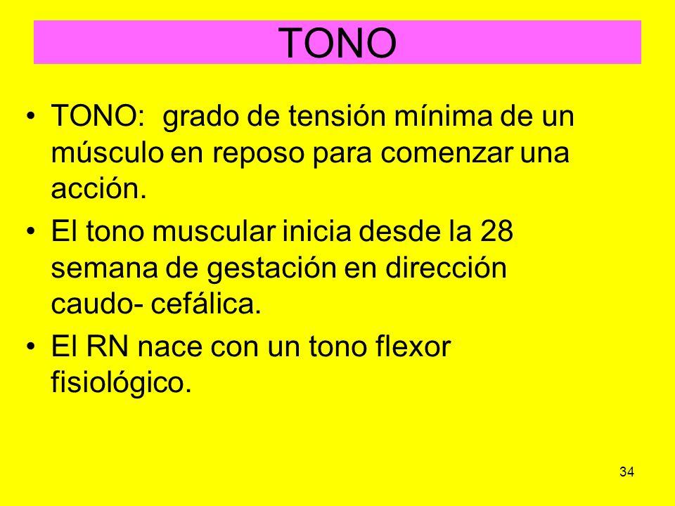 34 TONO TONO: grado de tensión mínima de un músculo en reposo para comenzar una acción. El tono muscular inicia desde la 28 semana de gestación en dir