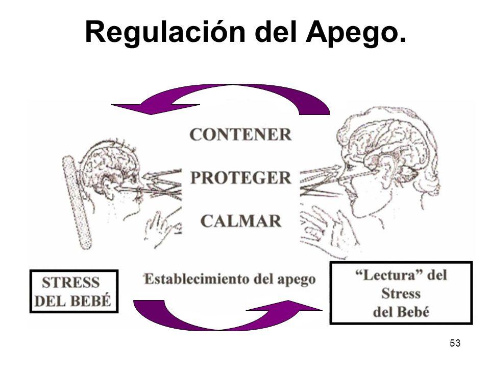 53 Regulación del Apego.