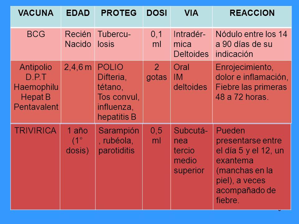 6 VACUNAEDADPROTEGDOSIVIAREACCION BCGRecién Nacido Tubercu- losis 0,1 ml Intradér- mica Deltoides Nódulo entre los 14 a 90 días de su indicación Antip