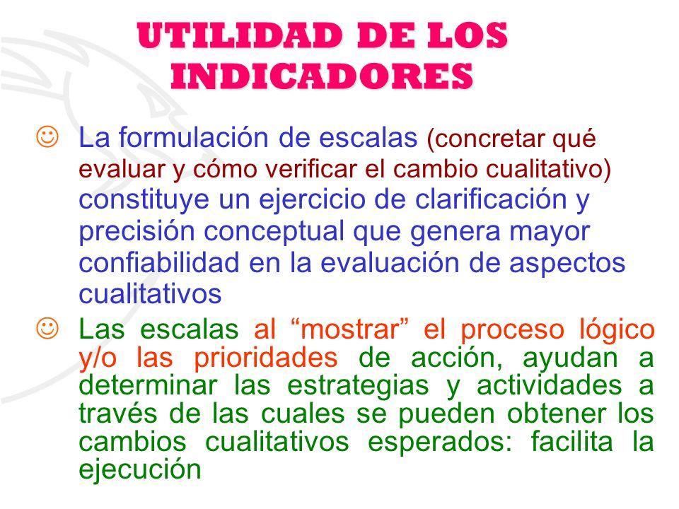 12 UTILIDAD DE LOS INDICADORES La formulación de escalas (concretar qué evaluar y cómo verificar el cambio cualitativo) constituye un ejercicio de cla