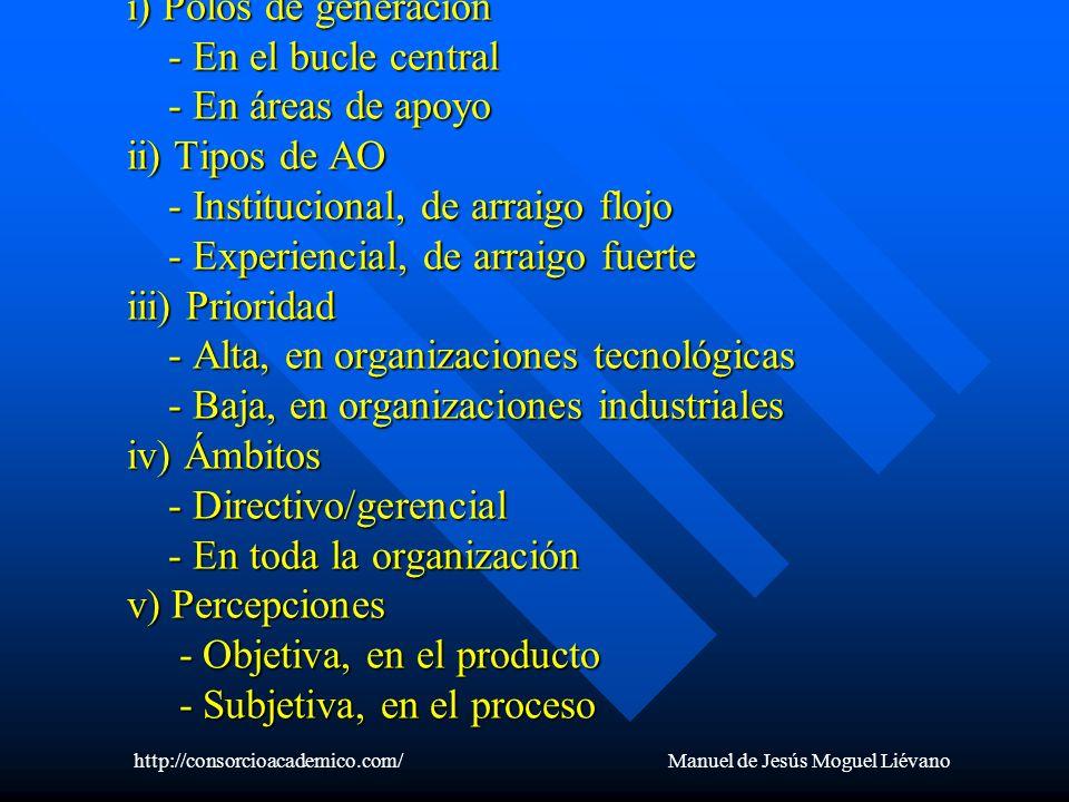 b) Manifestaciones de contexto i) Polos de generación - En el bucle central - En áreas de apoyo ii) Tipos de AO - Institucional, de arraigo flojo - Ex