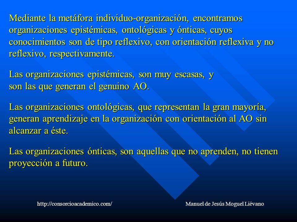 Mediante la metáfora individuo-organización, encontramos organizaciones epistémicas, ontológicas y ónticas, cuyos conocimientos son de tipo reflexivo,