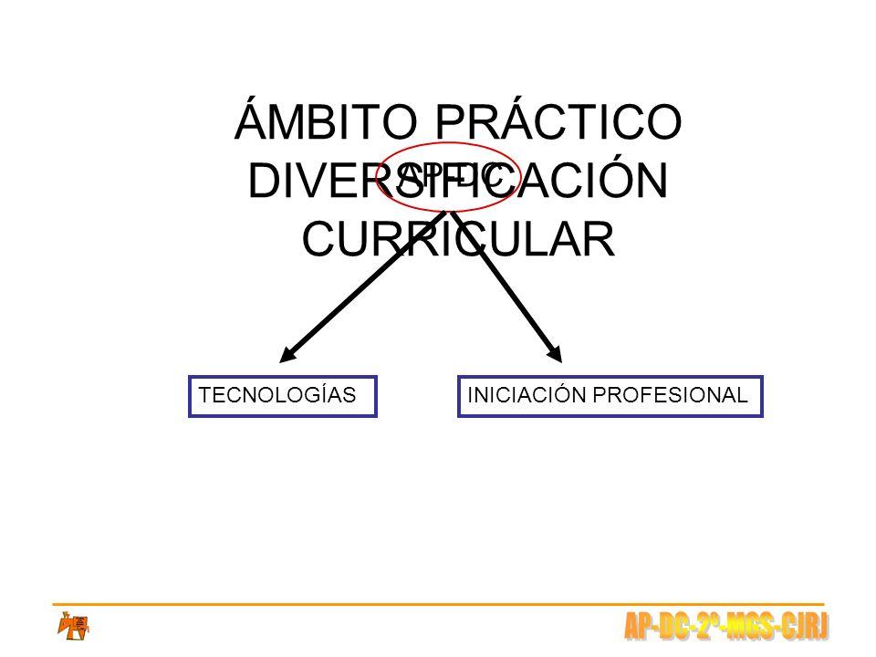 ÁMBITO PRÁCTICO DIVERSIFICACIÓN CURRICULAR AP-DC TECNOLOGÍASINICIACIÓN PROFESIONAL