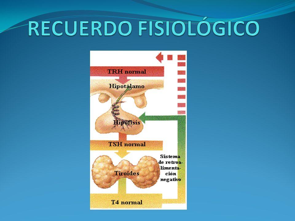 HIPOTIROIDISMO NEONATAL O CONGÉNITO -Ictericia fisiológica persistente, llanto ronco, distensión abdominal, hipotermia,letargia,problemas de alimentación… -Causa fundamental: déficit de yodo de la madre en el embarazo -1 de cada 4000 RN -Si no se trata, CRETINISMO ( neurológico y mixedematoso: talla corta, rasgos toscos,macroglosia,escasez de vello, y retarso irreversible del desarrollo fisico y mental) - Por su frecuencia y su tto precoz efectivo (levotiroxina a dosis 10-15 mcg/Kg/dia si es congénito ), existe un cribado sistemático a los RN.