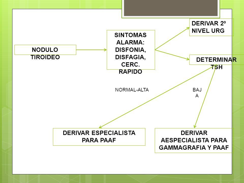 NODULO TIROIDEO SINTOMAS ALARMA: DISFONIA, DISFAGIA, CERC. RAPIDO DERIVAR 2º NIVEL URG DETERMINAR TSH DERIVAR ESPECIALISTA PARA PAAF DERIVAR AESPECIAL