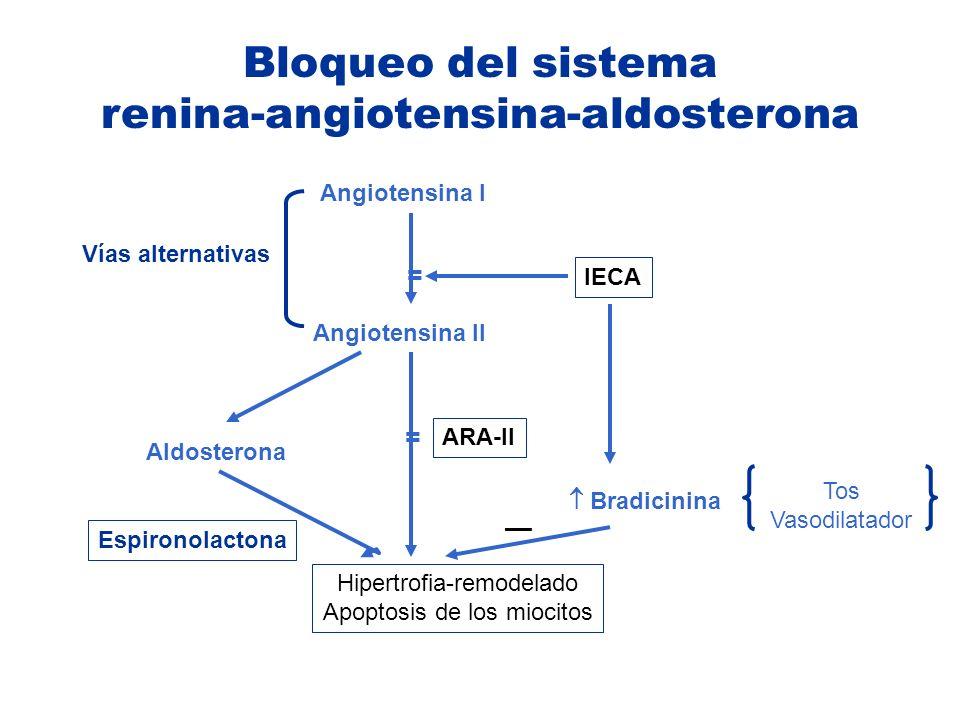 Angiotensina I Angiotensina II Hipertrofia-remodelado Apoptosis de los miocitos Aldosterona ARA-II IECA Bradicinina Espironolactona = Vías alternativa