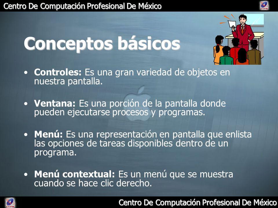 Centro De Computación Profesional De México Conceptos básicos Controles: Es una gran variedad de objetos en nuestra pantalla. Ventana: Es una porción