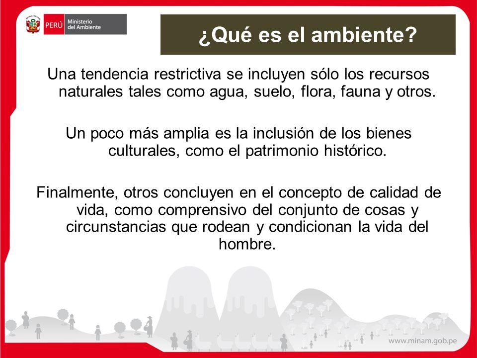 : : METAS PRIORITARIAS AL 2021