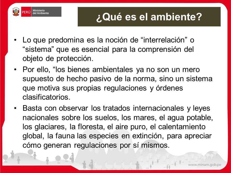 El ambiente como bien jurídico protegido Causa derechos y obligaciones a cada uno de los ciudadanos y ciudadanas.