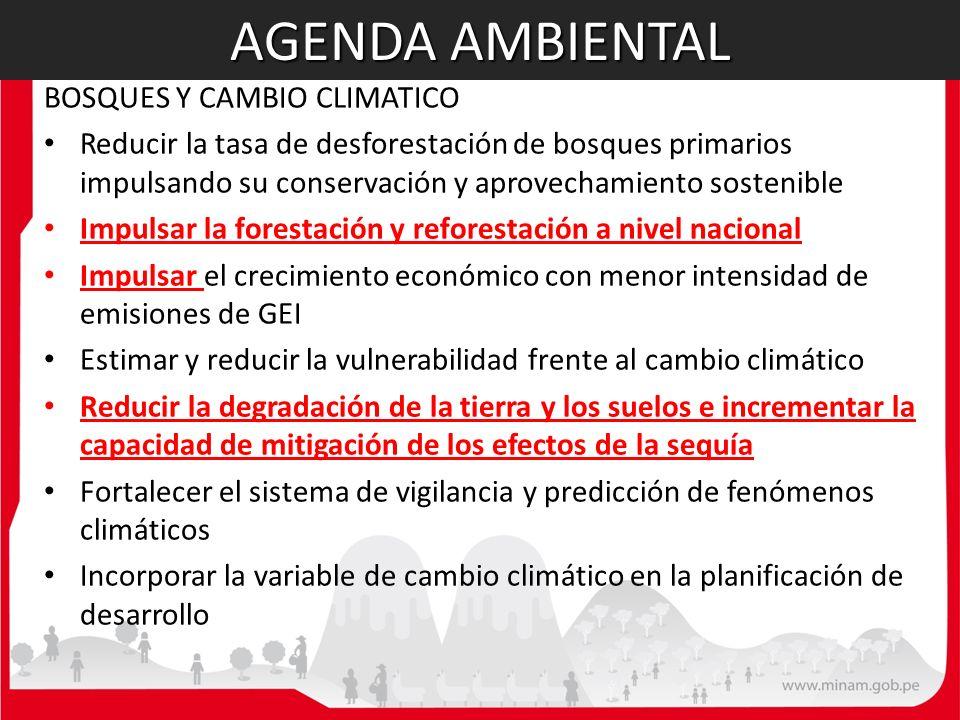 BOSQUES Y CAMBIO CLIMATICO Reducir la tasa de desforestación de bosques primarios impulsando su conservación y aprovechamiento sostenible Impulsar la