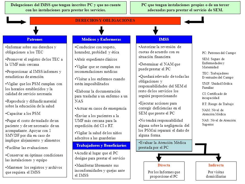 Los programas de PREVENIMSS y odontología preventiva.