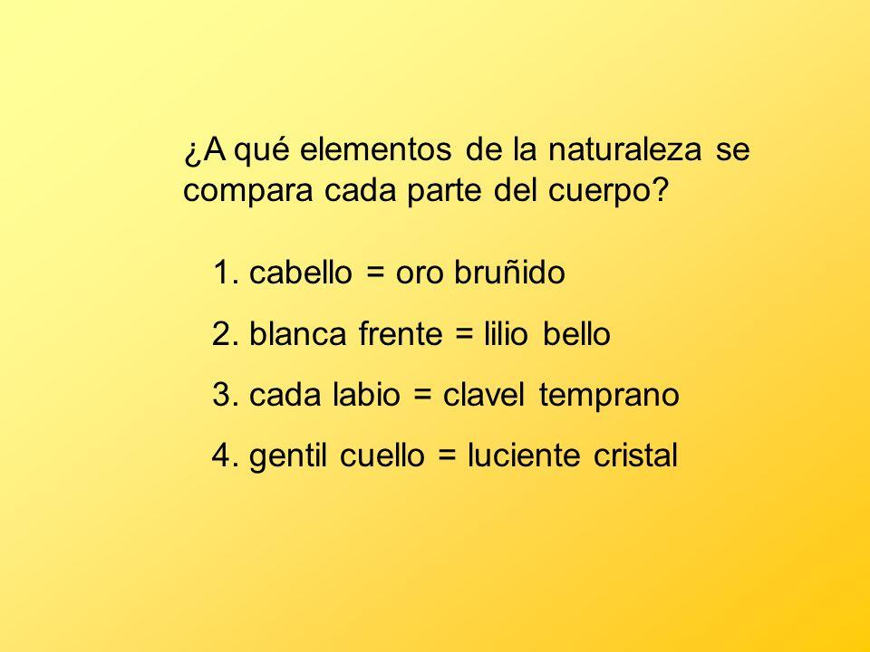 ¿A qué elementos de la naturaleza se compara cada parte del cuerpo? 1. cabello = oro bruñido 2. blanca frente = lilio bello 3. cada labio = clavel tem