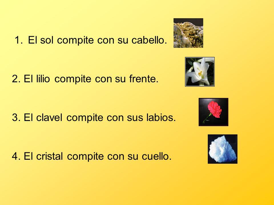 4. El cristal compite con su cuello. 3. El clavel compite con sus labios. 2. El lilio compite con su frente. 1.El sol compite con su cabello.