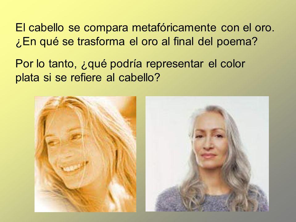 El cabello se compara metafóricamente con el oro. ¿En qué se trasforma el oro al final del poema? Por lo tanto, ¿qué podría representar el color plata