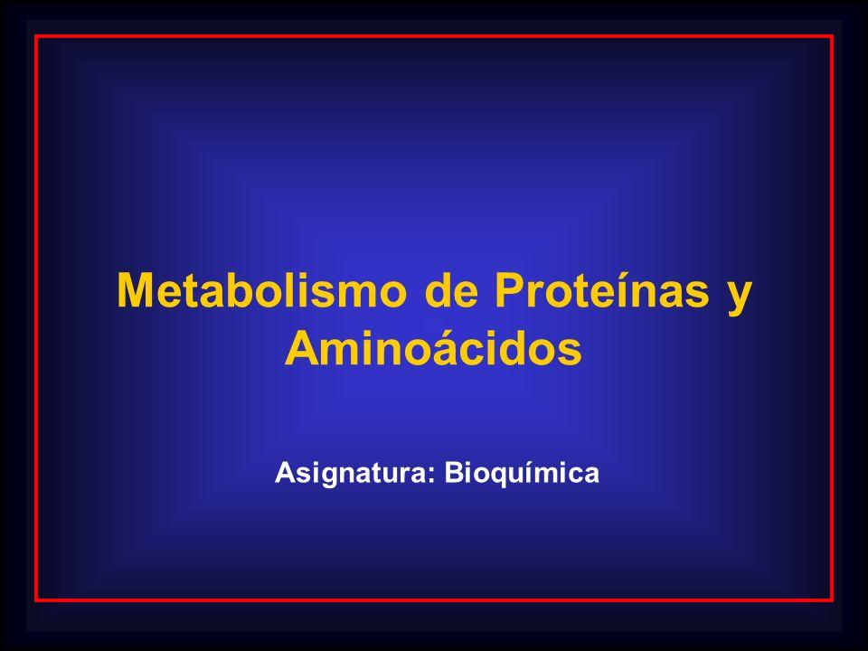 Metabolismo de Proteínas y Aminoácidos Asignatura: Bioquímica