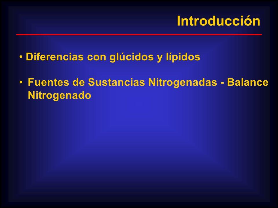 Introducción Diferencias con glúcidos y lípidos Fuentes de Sustancias Nitrogenadas - Balance Nitrogenado