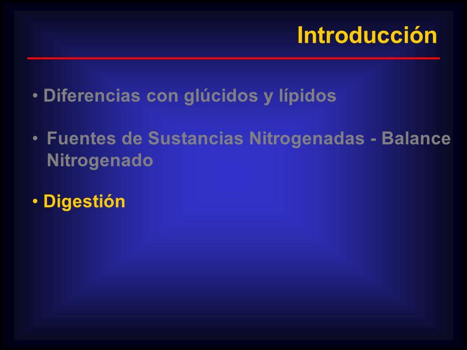 Introducción Diferencias con glúcidos y lípidos Fuentes de Sustancias Nitrogenadas - Balance Nitrogenado Digestión
