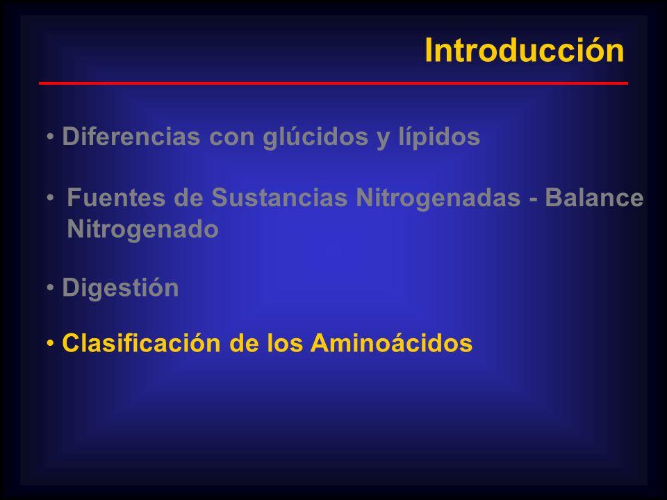 Introducción Diferencias con glúcidos y lípidos Fuentes de Sustancias Nitrogenadas - Balance Nitrogenado Digestión Clasificación de los Aminoácidos