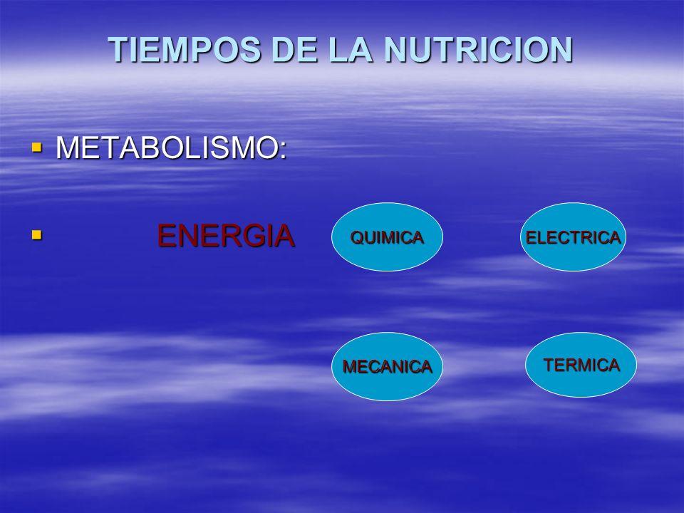 TIEMPOS DE LA NUTRICION METABOLISMO: METABOLISMO: ENERGIA ENERGIA QUIMICA MECANICA ELECTRICA TERMICA