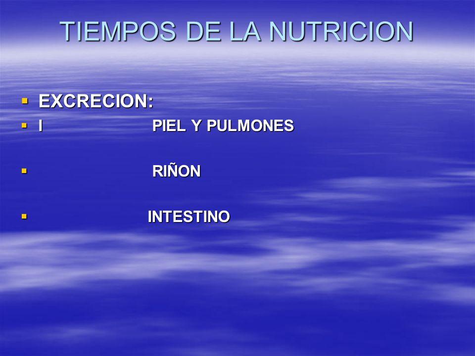 TIEMPOS DE LA NUTRICION EXCRECION: EXCRECION: I PIEL Y PULMONES I PIEL Y PULMONES RIÑON RIÑON INTESTINO INTESTINO