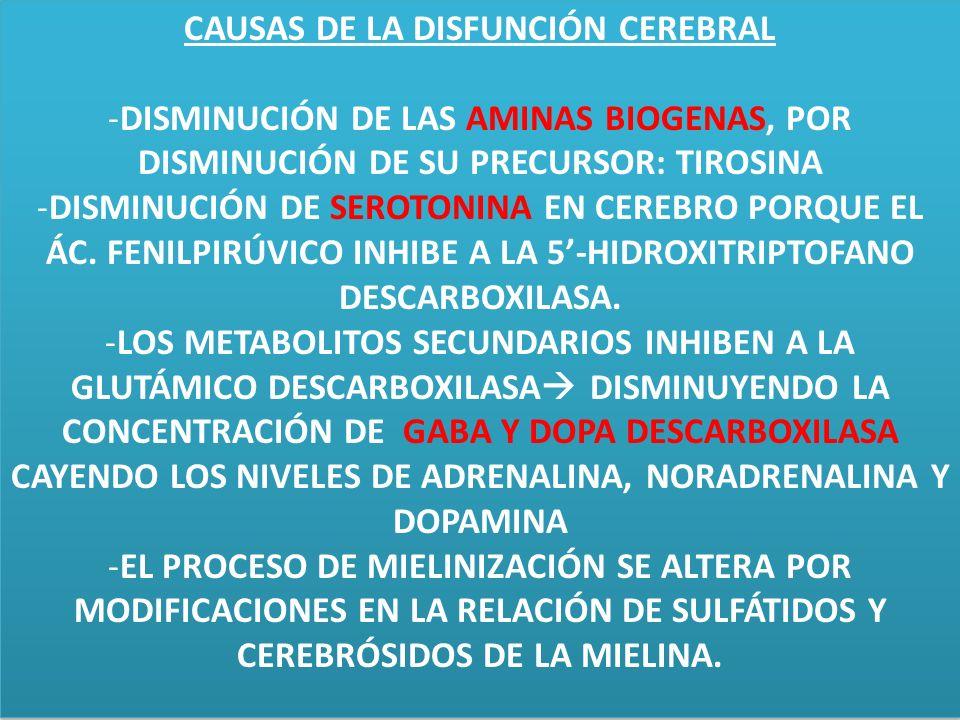 CAUSAS DE LA DISFUNCIÓN CEREBRAL -DISMINUCIÓN DE LAS AMINAS BIOGENAS, POR DISMINUCIÓN DE SU PRECURSOR: TIROSINA -DISMINUCIÓN DE SEROTONINA EN CEREBRO