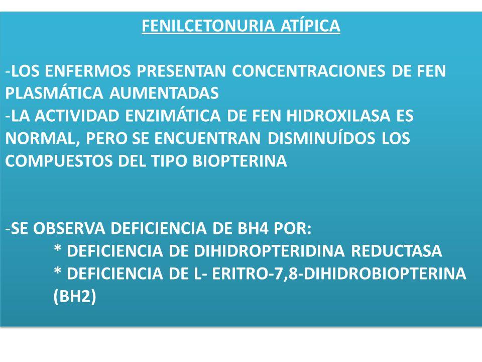 FENILCETONURIA ATÍPICA -LOS ENFERMOS PRESENTAN CONCENTRACIONES DE FEN PLASMÁTICA AUMENTADAS -LA ACTIVIDAD ENZIMÁTICA DE FEN HIDROXILASA ES NORMAL, PER