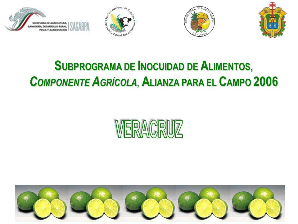 I NTRODUCCIÓN México Primer productor y exportador a nivel mundial de limón persa Veracruz Primer productor y exportador a nivel internacional 90% de la superficie establecida Destino de la Producción 62% Estados Unidos 8% Europa 3% Japón 14% Mercado nacional y el 13% a procesadoras (jugueras) Fuente: Consejo Estatal Citrícola
