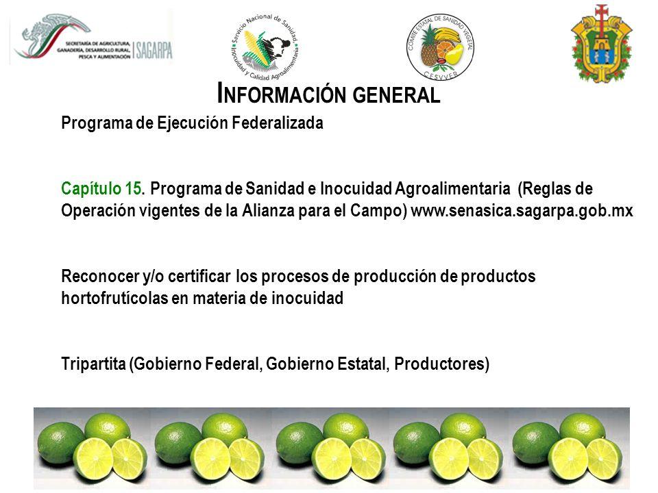 O BJETIVO G ENERAL Implementar Sistemas de Minimización de Riesgos mediante la aplicación de Buenas Prácticas Agrícolas (BPA) y Buenas Prácticas de Manejo (BPM) en unidades de producción y de empaque de limón persa en el Estado de Veracruz