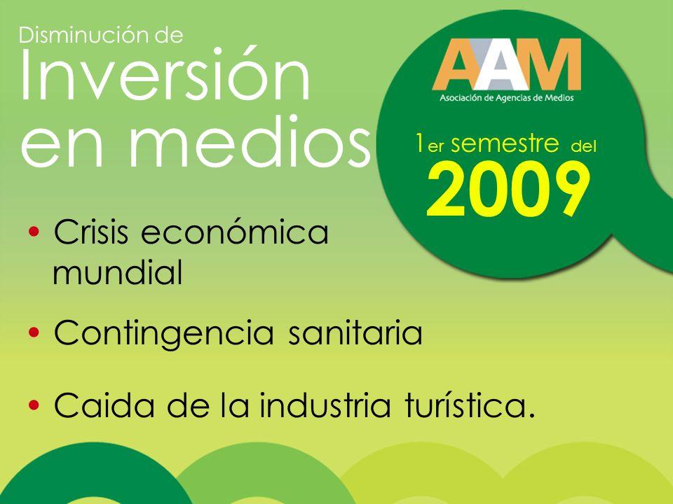 1 er semestre del 2009 Crisis económica mundial Contingencia sanitaria Caida de la industria turística.