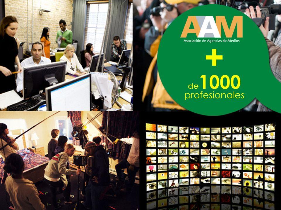 + de 1000 profesionales
