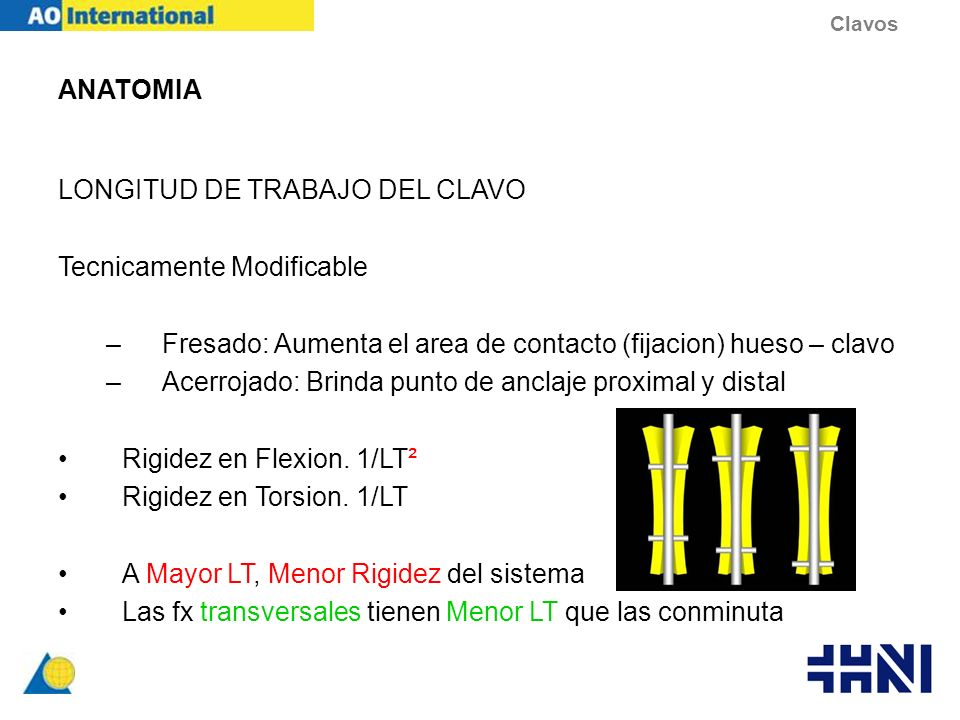 ANATOMIA LONGITUD DE TRABAJO DEL CLAVO Tecnicamente Modificable –Fresado: Aumenta el area de contacto (fijacion) hueso – clavo –Acerrojado: Brinda pun