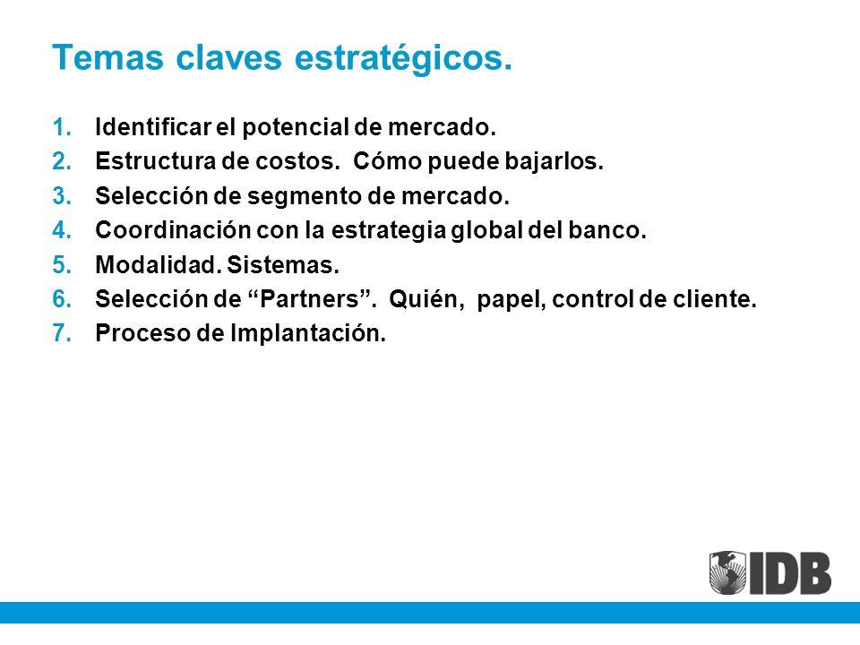 Temas claves estratégicos. 1.Identificar el potencial de mercado. 2.Estructura de costos. Cómo puede bajarlos. 3.Selección de segmento de mercado. 4.C