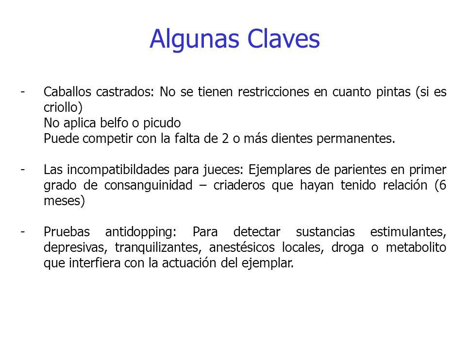 Algunas Claves -Caballos castrados: No se tienen restricciones en cuanto pintas (si es criollo) No aplica belfo o picudo Puede competir con la falta d