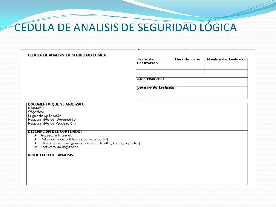 CEDULA DE ANALISIS DE SEGURIDAD LÓGICA