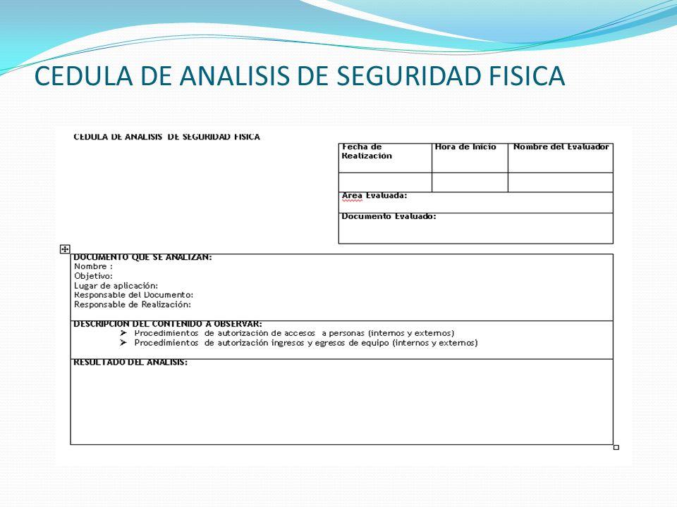 CEDULA DE ANALISIS DE SEGURIDAD FISICA
