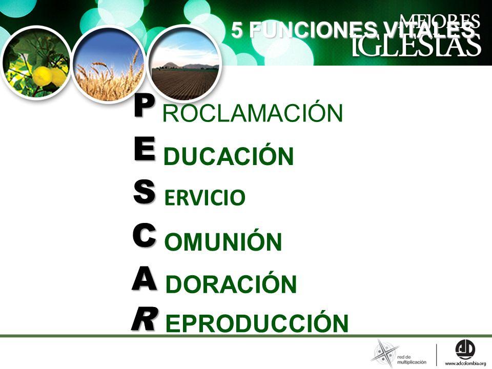 5 FUNCIONES VITALES 5 FUNCIONES VITALES PESCAPESCAPESCAPESCA ROCLAMACIÓN DUCACIÓN ERVICIO OMUNIÓN DORACIÓN EPRODUCCIÓN R