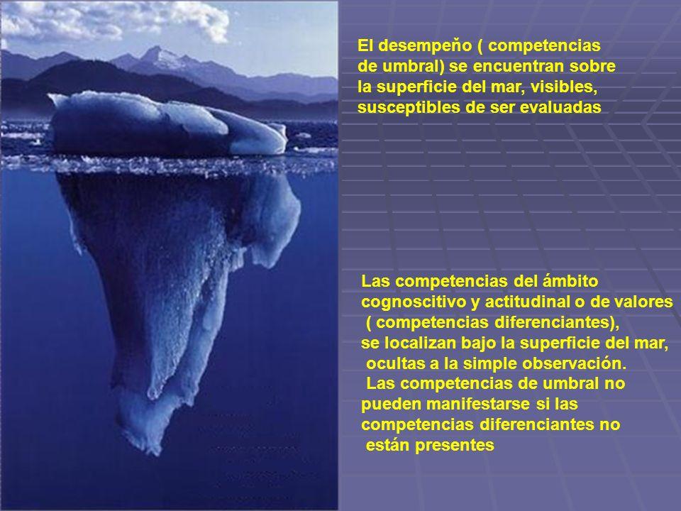 El desempeňo ( competencias de umbral) se encuentran sobre la superficie del mar, visibles, susceptibles de ser evaluadas Las competencias del ámbito