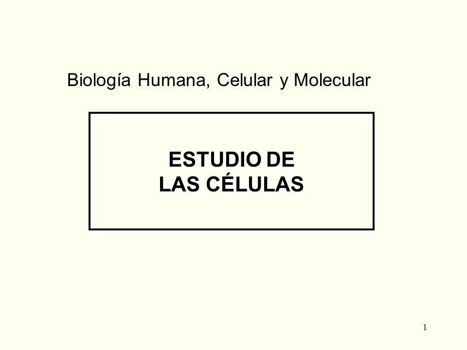 1 ESTUDIO DE LAS CÉLULAS Biología Humana, Celular y Molecular