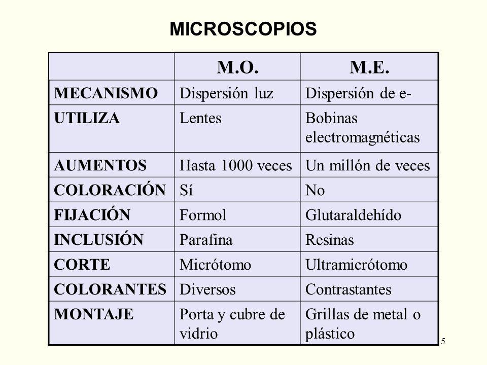 5 M.O.M.E. MECANISMODispersión luzDispersión de e- UTILIZALentesBobinas electromagnéticas AUMENTOSHasta 1000 vecesUn millón de veces COLORACIÓNSíNo FI