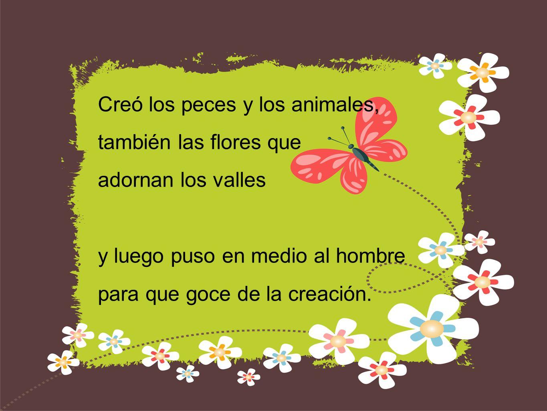 Creó los peces y los animales, también las flores que adornan los valles y luego puso en medio al hombre para que goce de la creación.