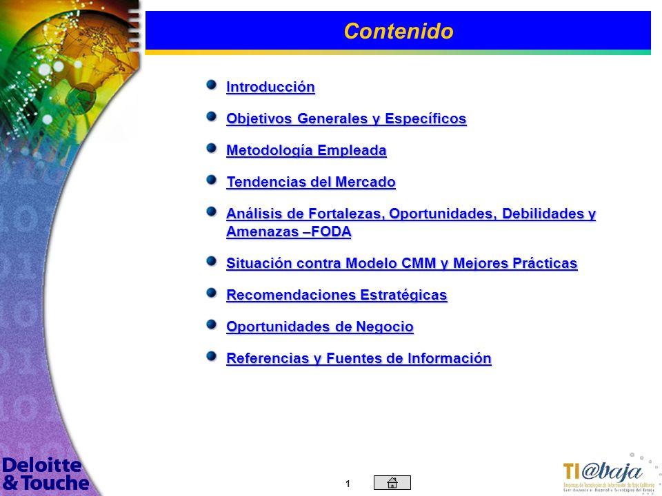 Evaluación de la Situación del Sector de Tecnologías de Información de Baja California Abril, 2003 © Deloitte & Touche, DTT 2003. Galaz, Yamazaki, Rui