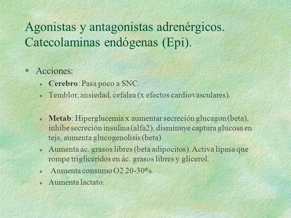 Agonistas y antagonistas adrenérgicos. Catecolaminas endógenas (Epi). §Acciones: l Cerebro: Pasa poco a SNC. l Temblor, ansiedad, cefalea (x efectos c