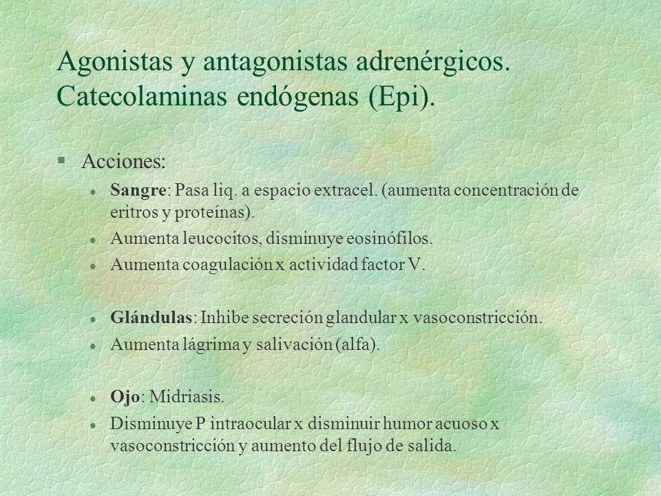 Agonistas y antagonistas adrenérgicos. Catecolaminas endógenas (Epi). §Acciones: l Sangre: Pasa liq. a espacio extracel. (aumenta concentración de eri
