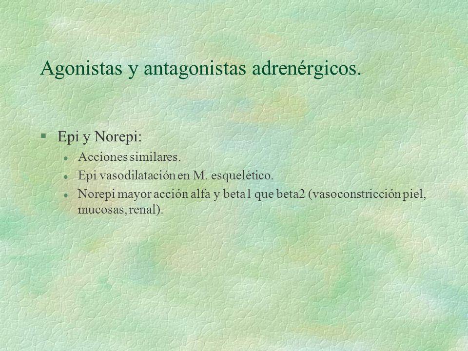 Agonistas y antagonistas adrenérgicos. §Epi y Norepi: l Acciones similares. l Epi vasodilatación en M. esquelético. l Norepi mayor acción alfa y beta1