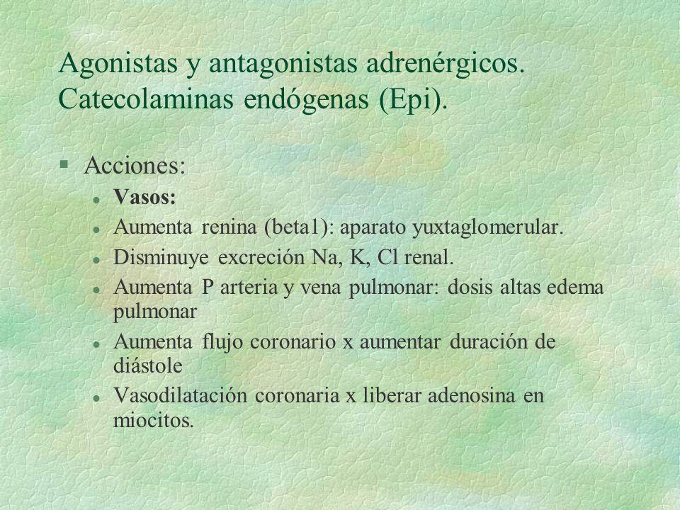 Agonistas y antagonistas adrenérgicos. Catecolaminas endógenas (Epi). §Acciones: l Vasos: l Aumenta renina (beta1): aparato yuxtaglomerular. l Disminu