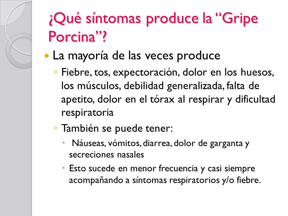 ¿Qué síntomas produce la Gripe Porcina? La mayoría de las veces produce Fiebre, tos, expectoración, dolor en los huesos, los músculos, debilidad gener