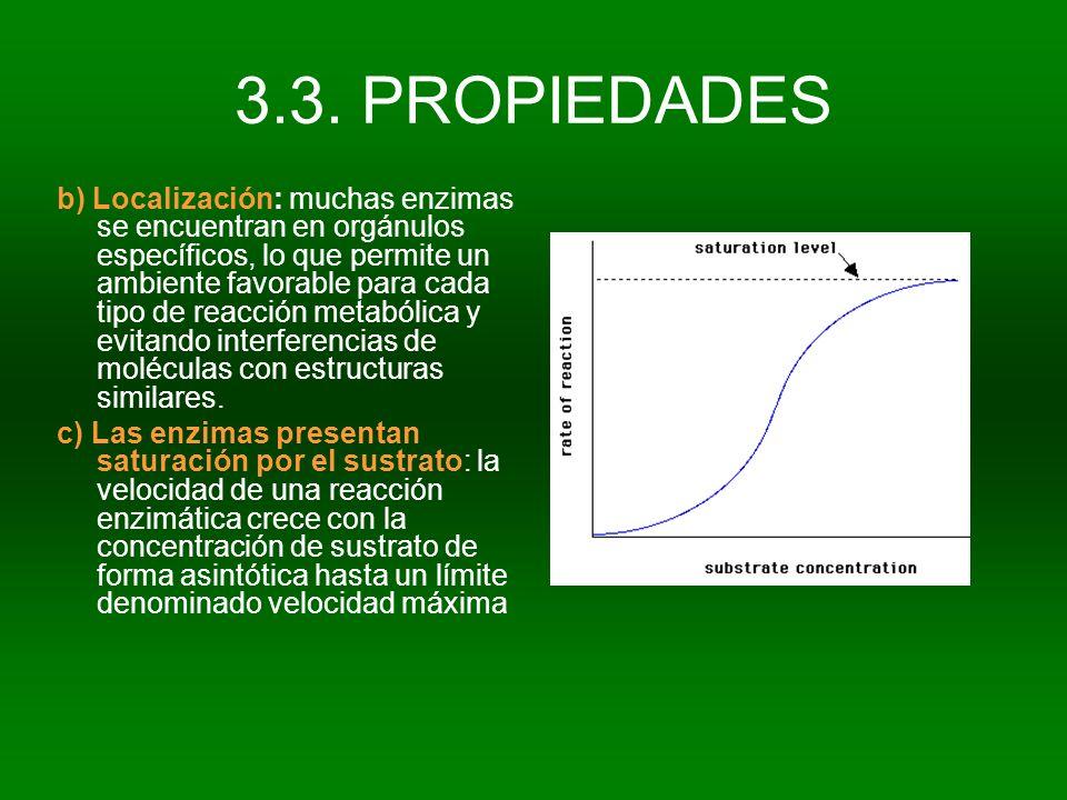 3.3. PROPIEDADES b) Localización: muchas enzimas se encuentran en orgánulos específicos, lo que permite un ambiente favorable para cada tipo de reacci